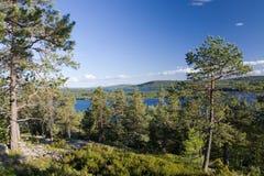 Angermanaelven, Σουηδία Στοκ εικόνα με δικαίωμα ελεύθερης χρήσης
