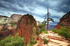 Anges atterrissant le sommet en nuages orageux Images libres de droits