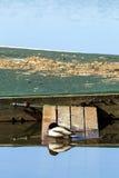 Angeschmiegte Ente sitzt auf Rampe, um anzukoppeln Stockfotos