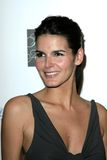 Angie Harmon Stock Photos