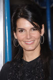 Angie Harmon Stock Images