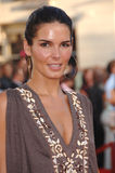 Angie Harmon. Actress ANGIE HARMON at the world premiere, in Los Angeles, of Miami Vice. July 20, 2006  Los Angeles, CA  2006 Paul Smith / Featureflash Royalty Free Stock Photo