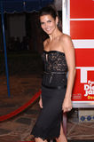 Angie Harmon. Actress ANGIE HARMON at the Los Angeles premiere of Fun With Dick and Jane. December 14, 2005  Los Angeles, CA.  2005 Paul Smith / Featureflash Stock Photography