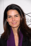 Angie Harmon Royalty Free Stock Images
