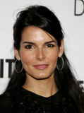 Angie Harmon. HOLLYWOOD, CALIFORNIA. Thursday December 7, 2006. Angie Harmon attends the Los Angeles Premiere of The Pursuit of Happyness held at the Mann Royalty Free Stock Photo
