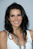 Angie Harmon, Karl Lagerfeld Stock Photography