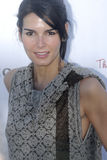 Angie Harmon on the red carpet. In West Hollywood in March 2007 stock photo