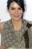 Angie Harmon on the red carpet Royalty Free Stock Image