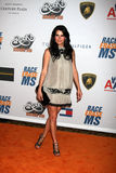Angie Harmon,THE ROCK Stock Images