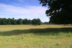angielska łąki obrazy stock