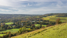 Angielska wieś, północ Zestrzela w Surrey zdjęcia royalty free