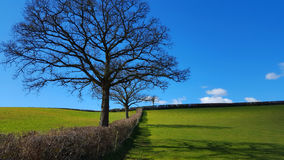 angielska ziemia uprawna Zdjęcia Royalty Free