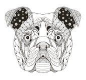 Angielski buldog głowy zentangle stylizował, wektor, ilustracja, f Fotografia Royalty Free