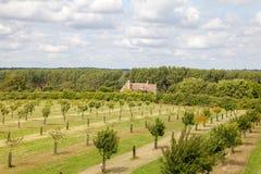 Angielski kraj rezydenci ziemskiej domu sadu krajobraz obraz stock