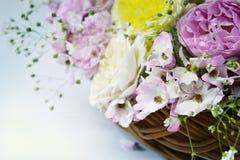 Angielskie róże w koszu na neutralnym tle fotografia stock