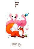 Angielskiego abecadła serie Pocieszni zwierzęta piszą list F 1/26 Zdjęcia Royalty Free
