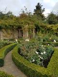 Angielszczyzna ogród Zdjęcie Royalty Free