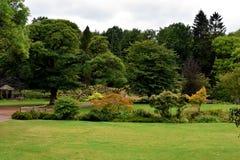 Angielszczyzna ogród obrazy royalty free
