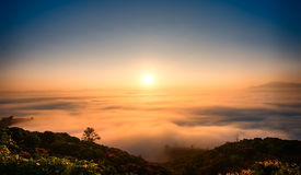 Angkhang. Sunrise mist chiang mai thailand Stock Images