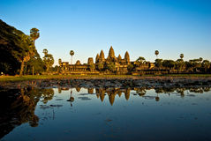 angkor柬埔寨日落wat 库存照片