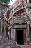 angkor柬埔寨破庙wat 免版税库存照片
