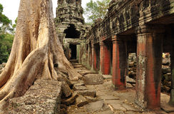 angkor柬埔寨 高棉Banteay Kdei寺庙废墟 库存图片