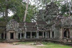 angkor柬埔寨prohm ta寺庙wat 免版税图库摄影