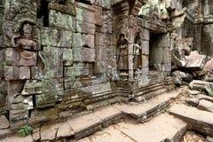 angkor柬埔寨prohm ta 库存图片