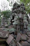 angkor柬埔寨prohm ta 库存照片