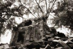 angkor粉碎的寺庙 免版税库存图片