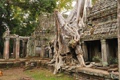 angkor Καμπότζη khan ναός preah Στοκ Φωτογραφίες