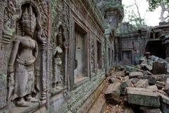 angkor Καμπότζη prohm TA Στοκ φωτογραφία με δικαίωμα ελεύθερης χρήσης