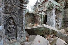 angkor Καμπότζη prohm TA Στοκ Φωτογραφία