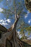 Angkor Banteay Kdei Στοκ Εικόνες