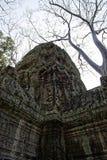 Angkor cambodia Stock Photography
