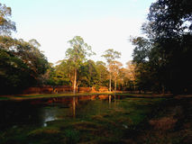 Angkor Cambodia Stock Photos