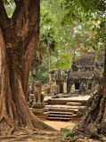 Angkor, Cambodia. Khmer Banteay Kdei temple ruins Royalty Free Stock Photography
