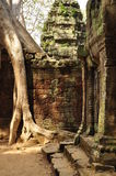 Angkor, Cambodia. Khmer Banteay Kdei temple ruins Royalty Free Stock Photos