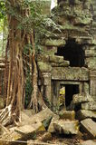 Angkor, Cambodia. Khmer Banteay Kdei temple ruins Stock Images