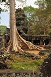Angkor, Cambodia. Khmer Banteay Kdei temple ruins Royalty Free Stock Images