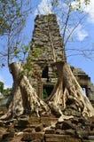 angkor Cambodia palilay preah Obrazy Stock