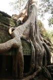 angkor Cambodia thom Obraz Royalty Free