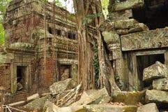 Angkor, Cambogia Rovine khmer del tempio di promenade di tum Fotografia Stock