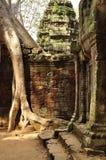 Angkor, Camboya Ruinas del templo de Banteay Kdei del Khmer Fotos de archivo libres de regalías