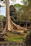 Angkor, Camboya Ruinas del templo de Banteay Kdei del Khmer Imágenes de archivo libres de regalías