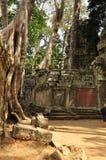 Angkor, Camboya Ruinas del templo de Banteay Kdei del Khmer Foto de archivo
