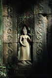 Angkor carve. The fairy  carve of angkor Royalty Free Stock Photos