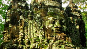 Angkor faces time lapse loop. Historical Angkor faces in the shade of trees time lapse loop stock footage
