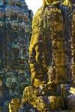 Angkor Kadziowy Świątynny Siem Przeprowadza żniwa Kambodża zdjęcia royalty free