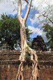 angkor prohm TA Στοκ φωτογραφία με δικαίωμα ελεύθερης χρήσης